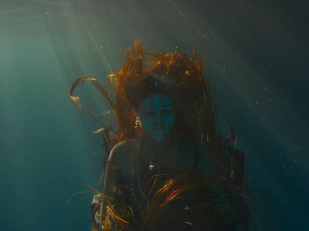Wellama Underwater