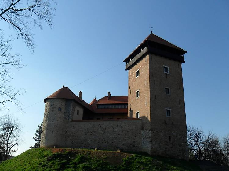 Dine in a medieval castle