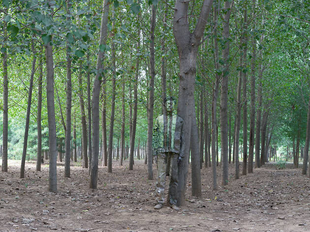 Liu Bolin, 'In the Woods'