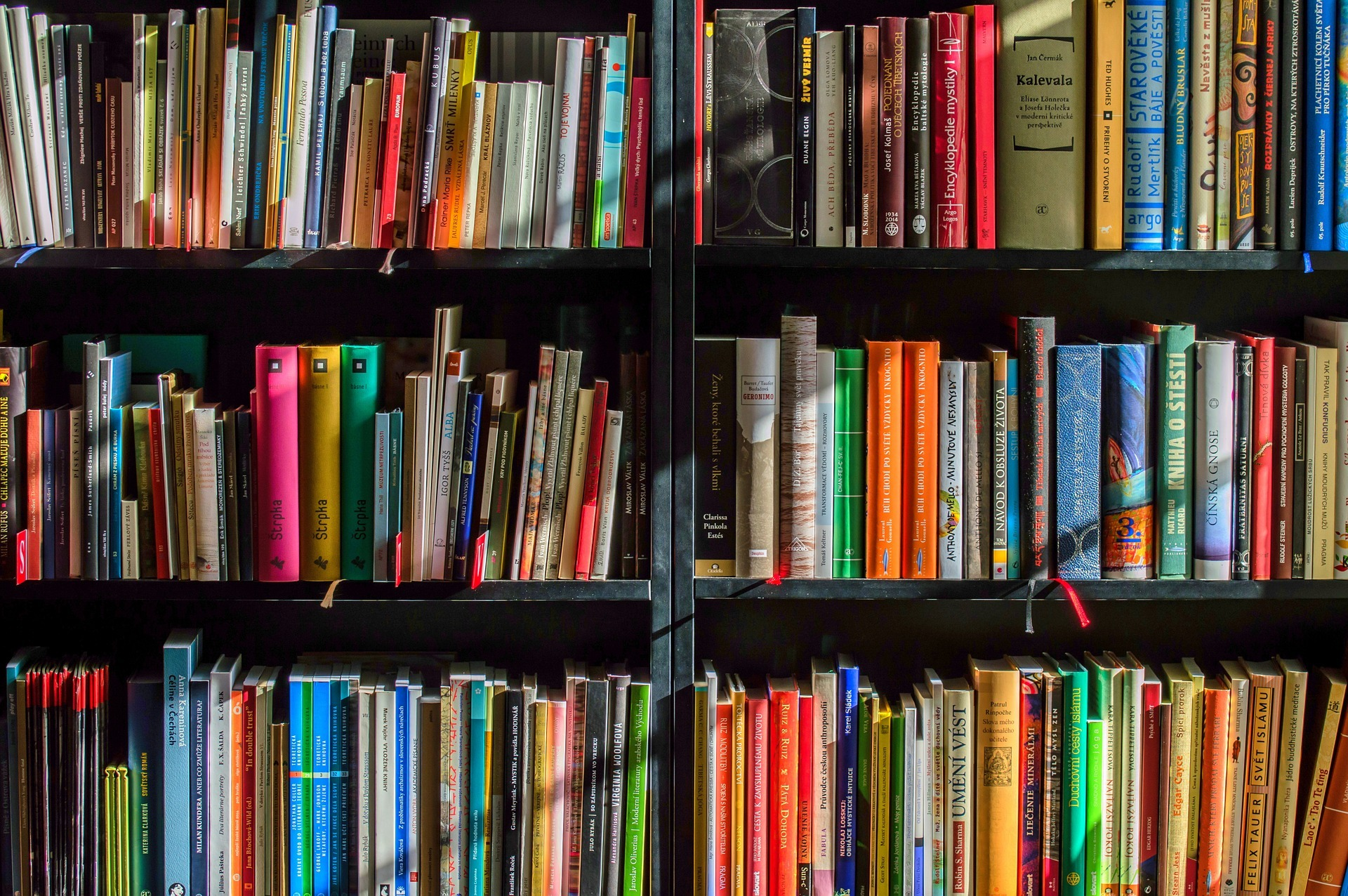 Newberry Library Book Fair