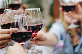 People toasting glasses of red wine