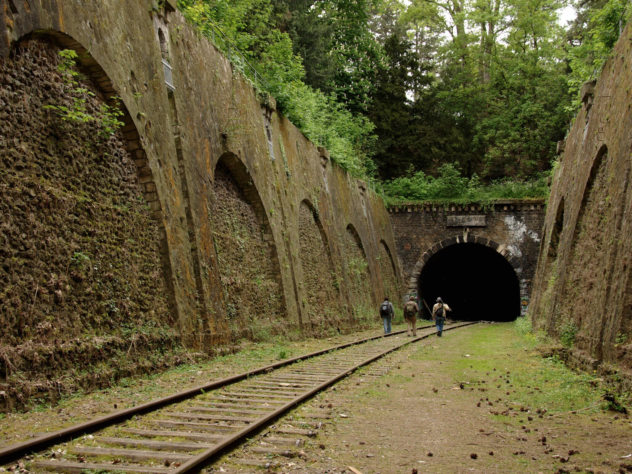 The abandoned railway tracks of the Petite Ceinture in Paris