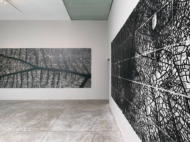 Tierra firme es la exposición de Jan Hendrix en el MUAC