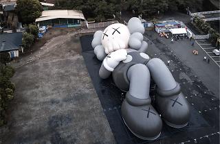 Kaws:Holiday Mt Fuji