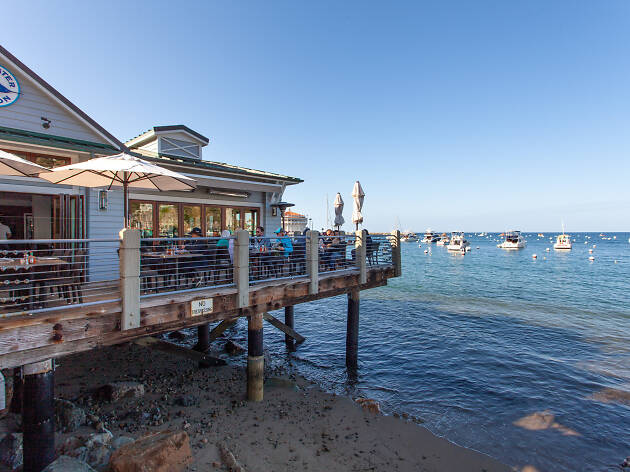 Best Catalina Island Restaurants And Bars For Vacation Eats