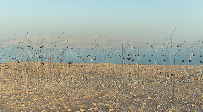 Christian Boltanski Animitas