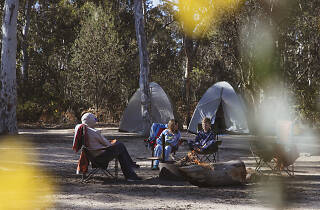 Dunns Swamp - Ganguddy Picnic and Camping Area, Wollemi National Park.