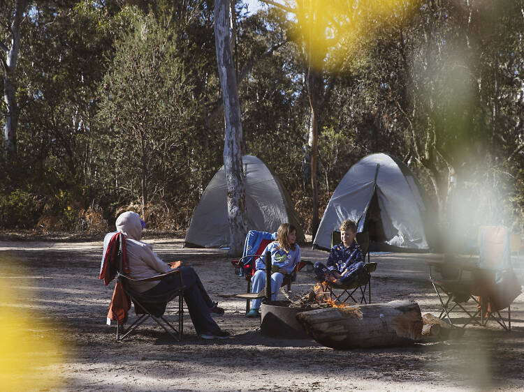 Ganguddy-Dunns Swamp Campground, Wollemi National Park