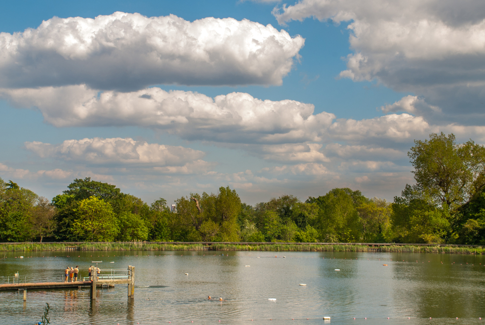 Hampstead Heath swimming ponds