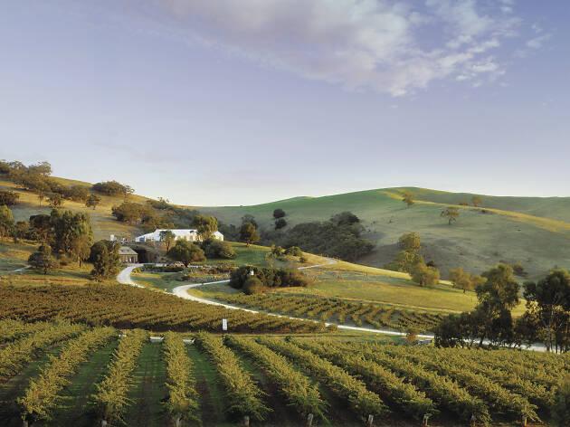 Bethany Wines, Barossa Valley, SA