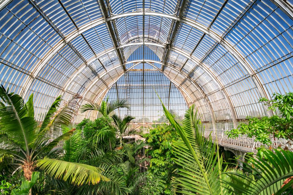 Kew Gardens, Temperate House