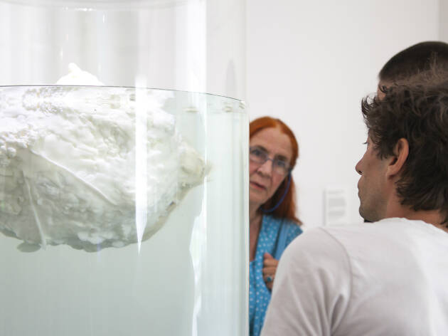 People looking at a white fatberg floating in a tank
