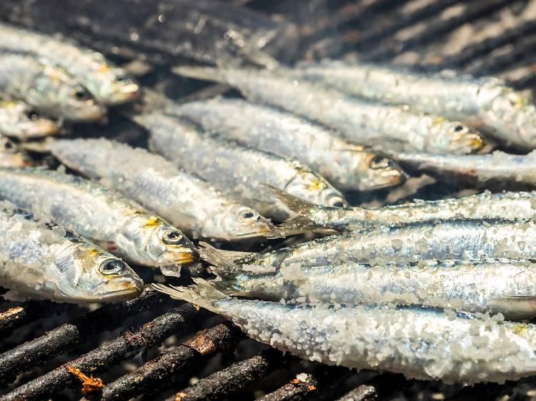 Sample sardines at Konoba Batana