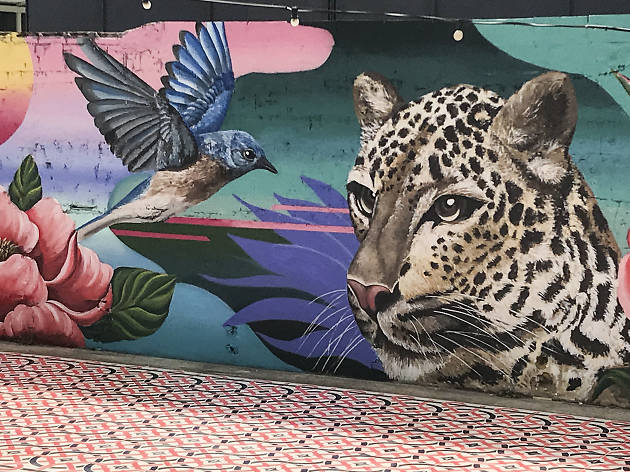 Nau Bostik murals