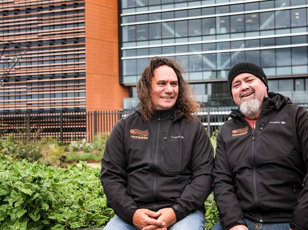 Sydney is home to the first ever Indigenous rooftop garden dedicated to native plants