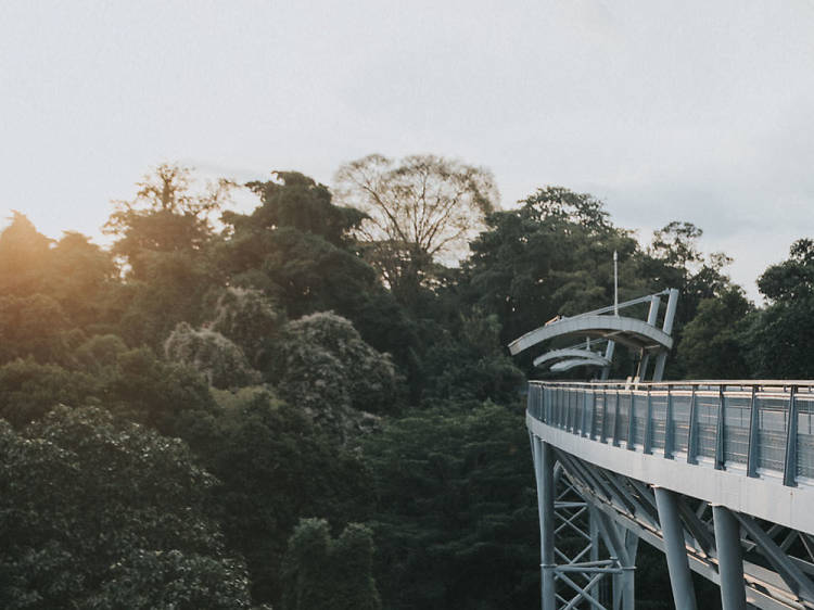 The best outdoor spots in Singapore to admire nature from above