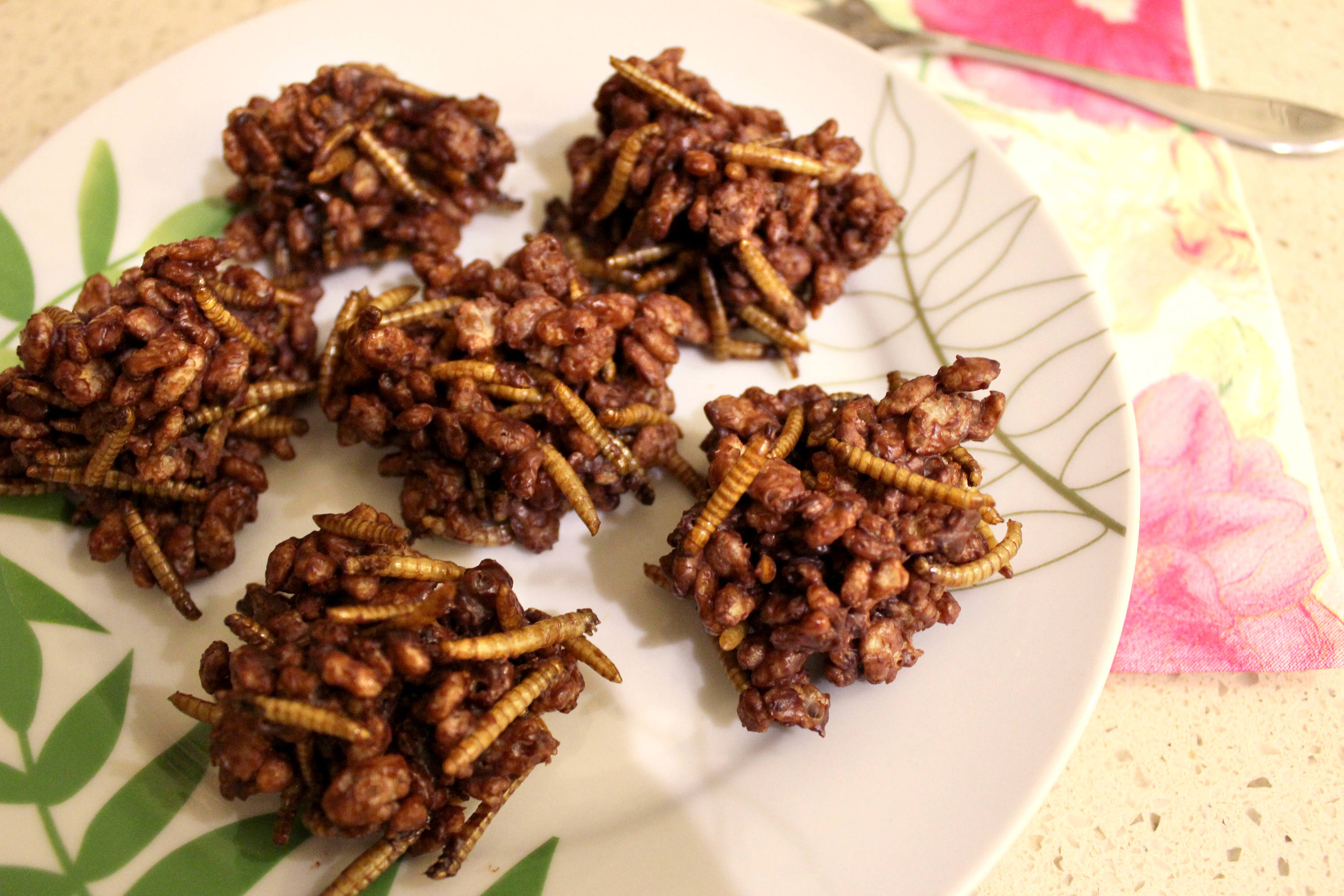 Time Out Tries: Edible Insect Farm Tour