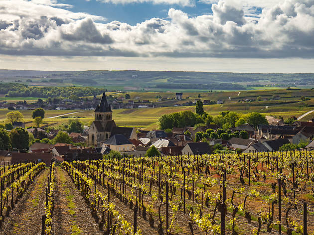 Fields and a church in the Champagne region