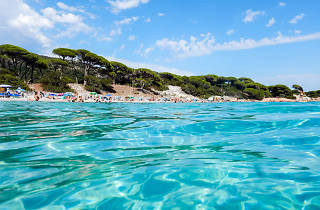 Palombaggia beach seen from the water