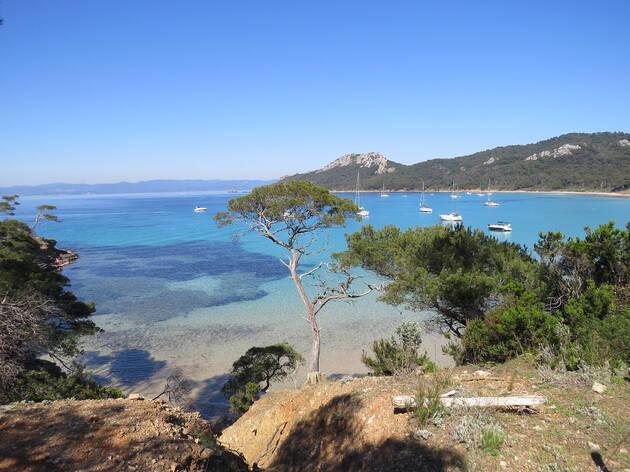 Vue sur la plage de l'île de Porquerolles
