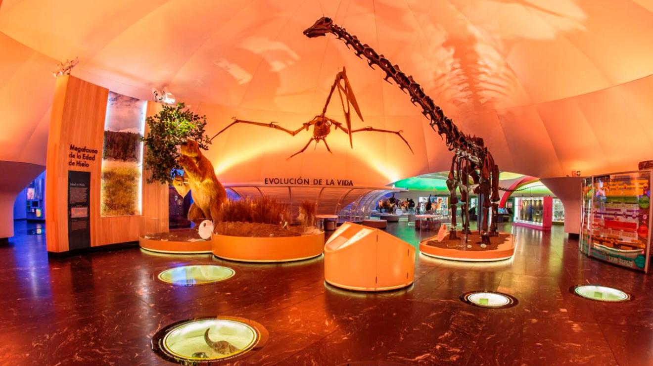 Los mejores lugares para ver dinosaurios en la CDMX