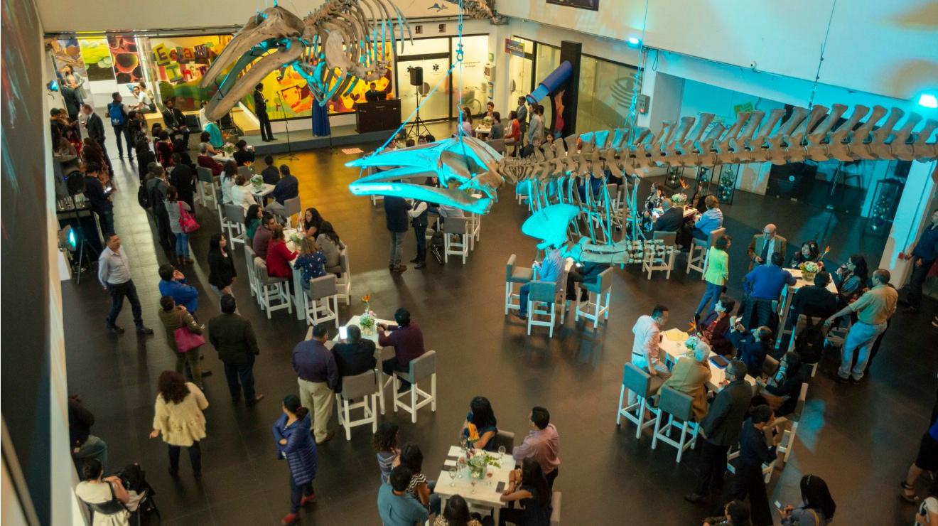 El Universum celebra el Día del Niños con ciencia, música y cuentacuentos