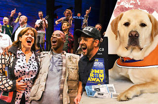 Come from Away charity night 2019 supplied/edited images