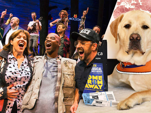 See Come from Away and meet puppies at this charity performance