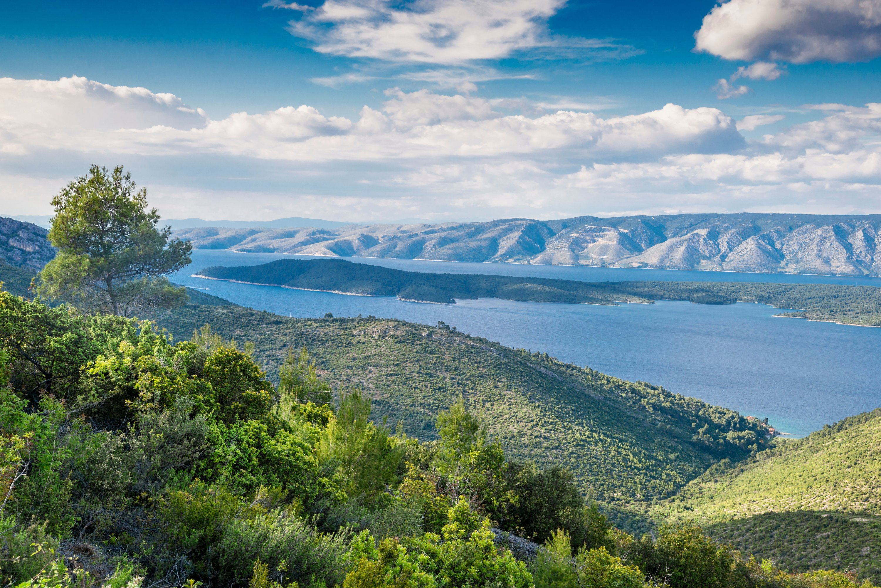 Great things to do in Dalmatia this summer