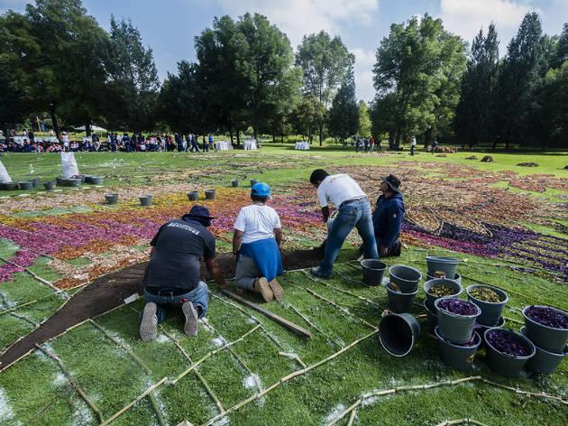 Feria de las Flores Xochitla (Foto: Cortesía de Xochitla Parque Ecológico)
