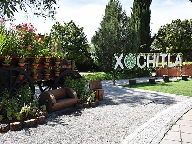Feria de las Flores  (Foto: Cortesía de Xochitla Parque Ecológico)