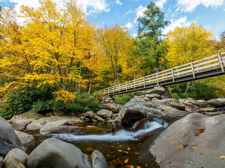 September: Great Smoky Mountains National Park