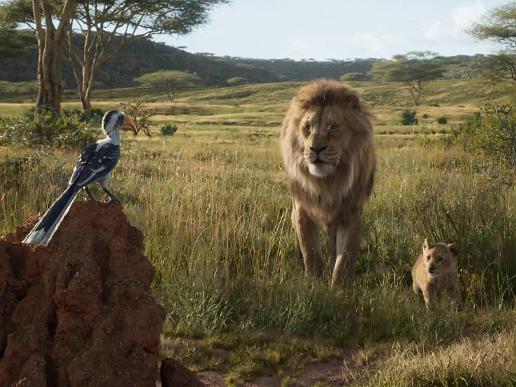 Animación: El rey león