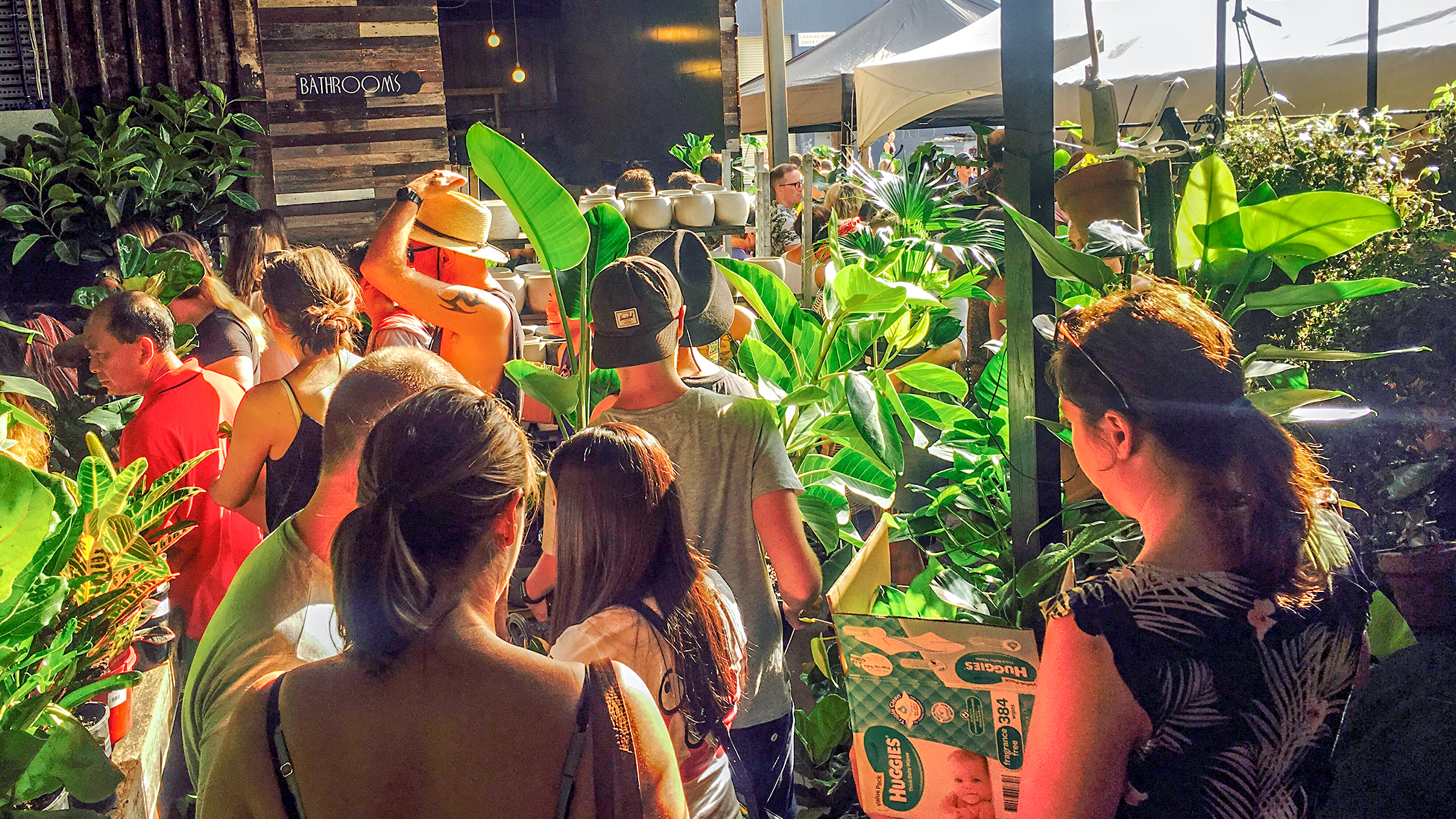 People shopping for plants at Stick n Stone.