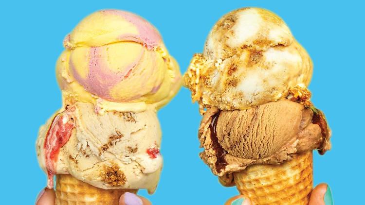 Free Van Leeuwen ice cream giveaway LA Zoo with Stitch Fix Stitch Kids