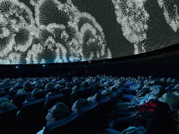 El Sónar abre una puerta al futuro con imágenes inmersivas y realidad virtual