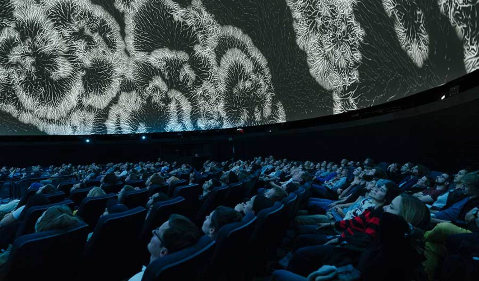 Imatges immersives i realitat virtual