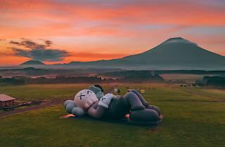 Kaws:Holiday Japan