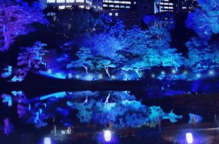 江戸夏夜会