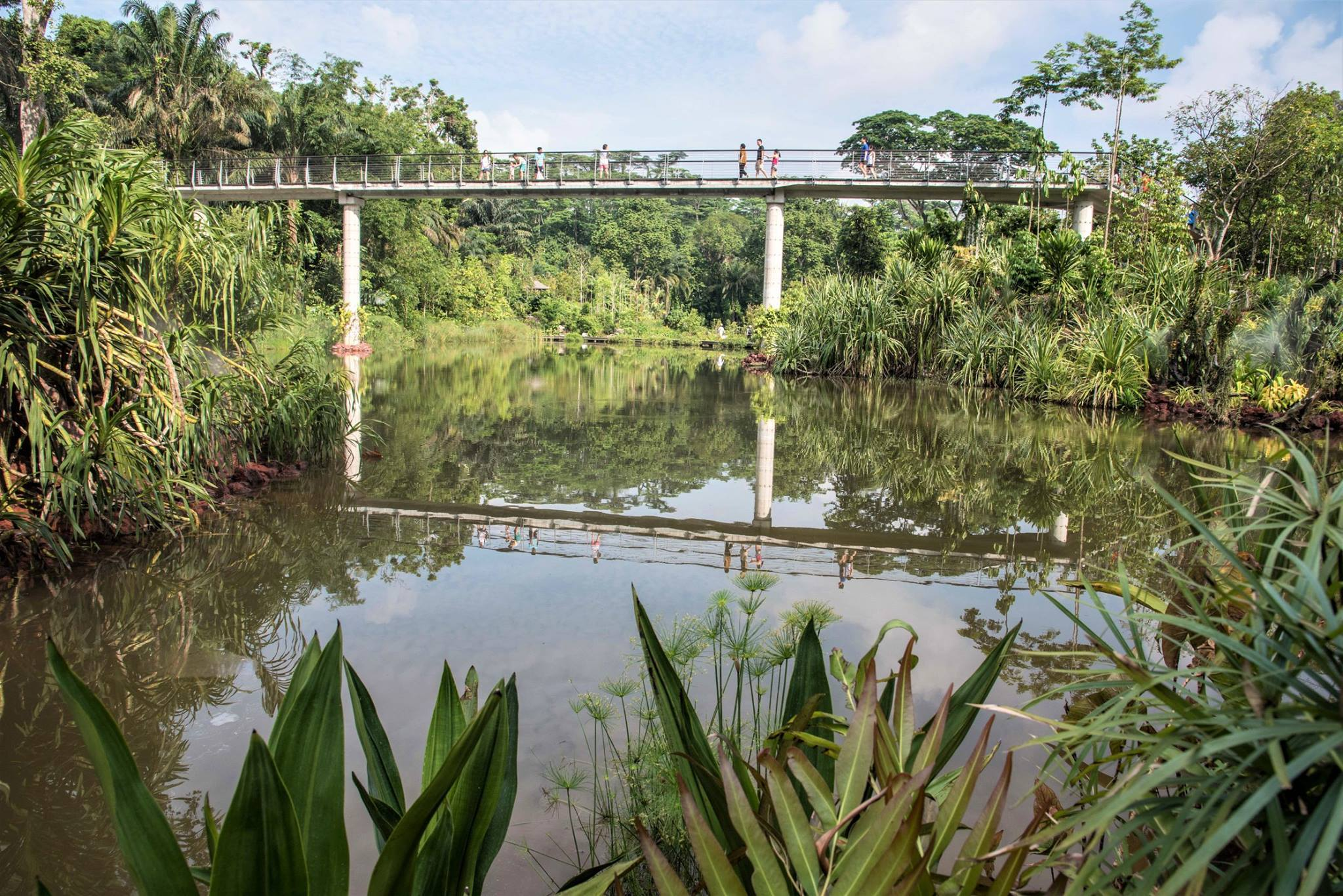 The best secret and hidden parks in Singapore