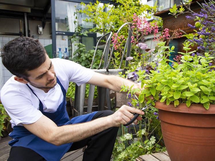 15 innovative restaurants and bars making London greener