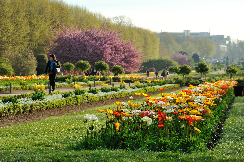 Jardin des Plantes | Attractions in 5e arrondissement, Paris