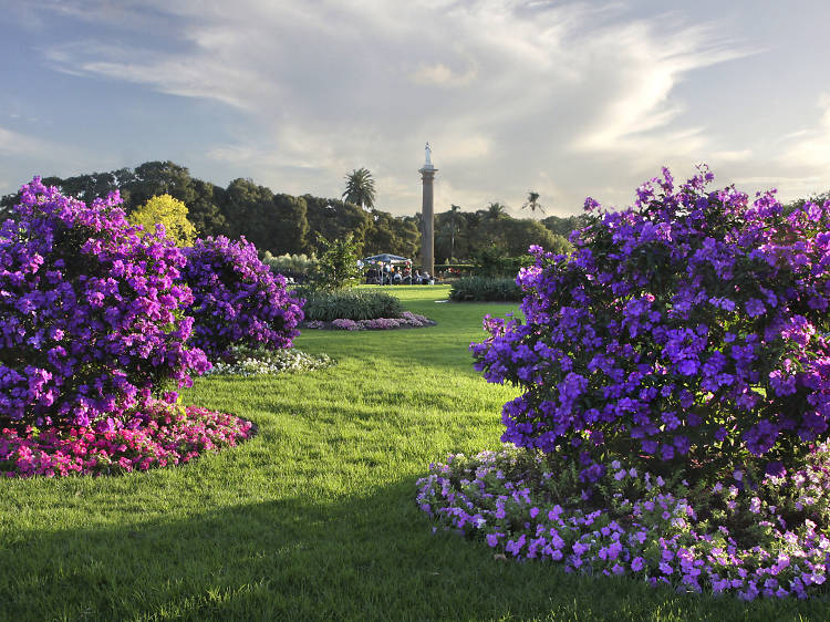 Where to find the best Sydney parks