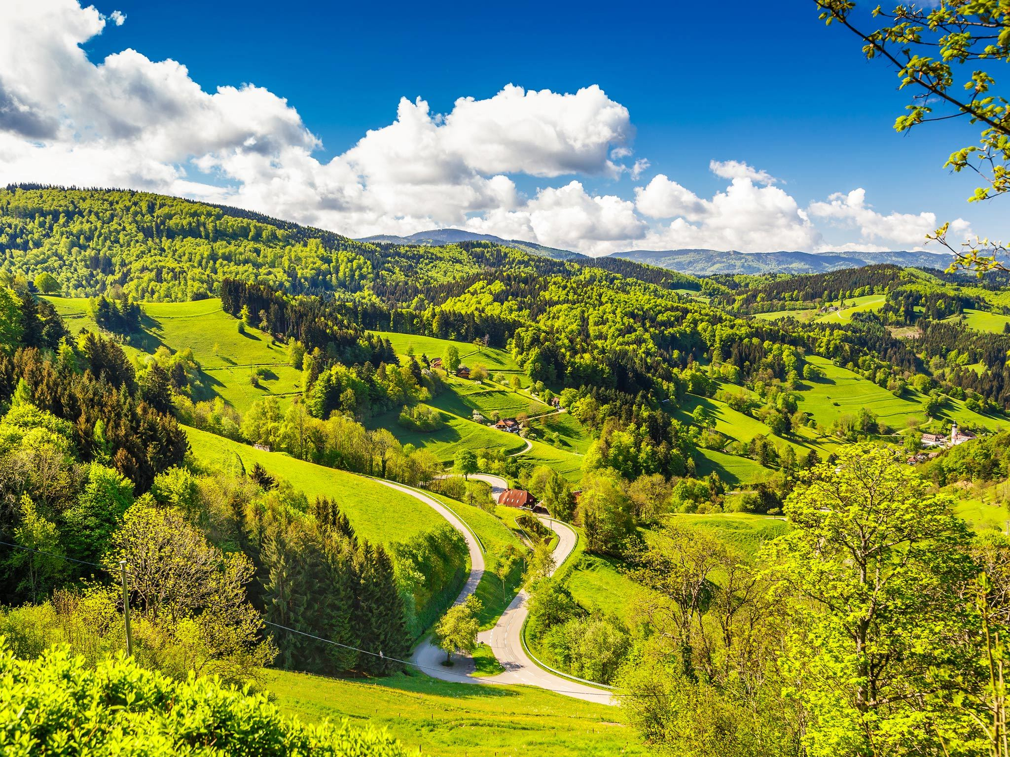 Rolling hills in the Black Forest region of Germany
