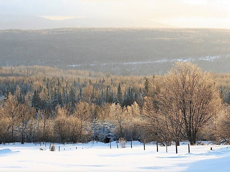 The Eastern Townships, QC