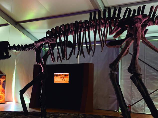 Encuentro con Dinosaurios (Foto: Cortesía Ace Publicidad)