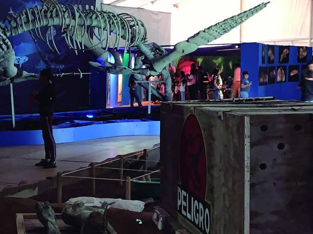 Encuentro con Dinosaurios (Foto: Ace Publicidad)