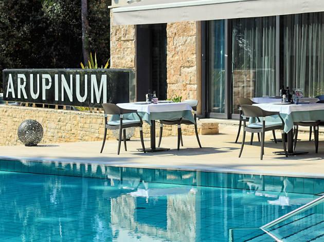 Restaurant Arupinum