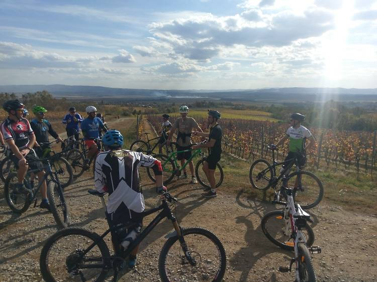 Cycle the Limes Trail