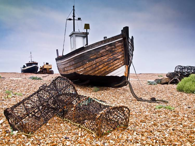 9 really great things to do in Dungeness